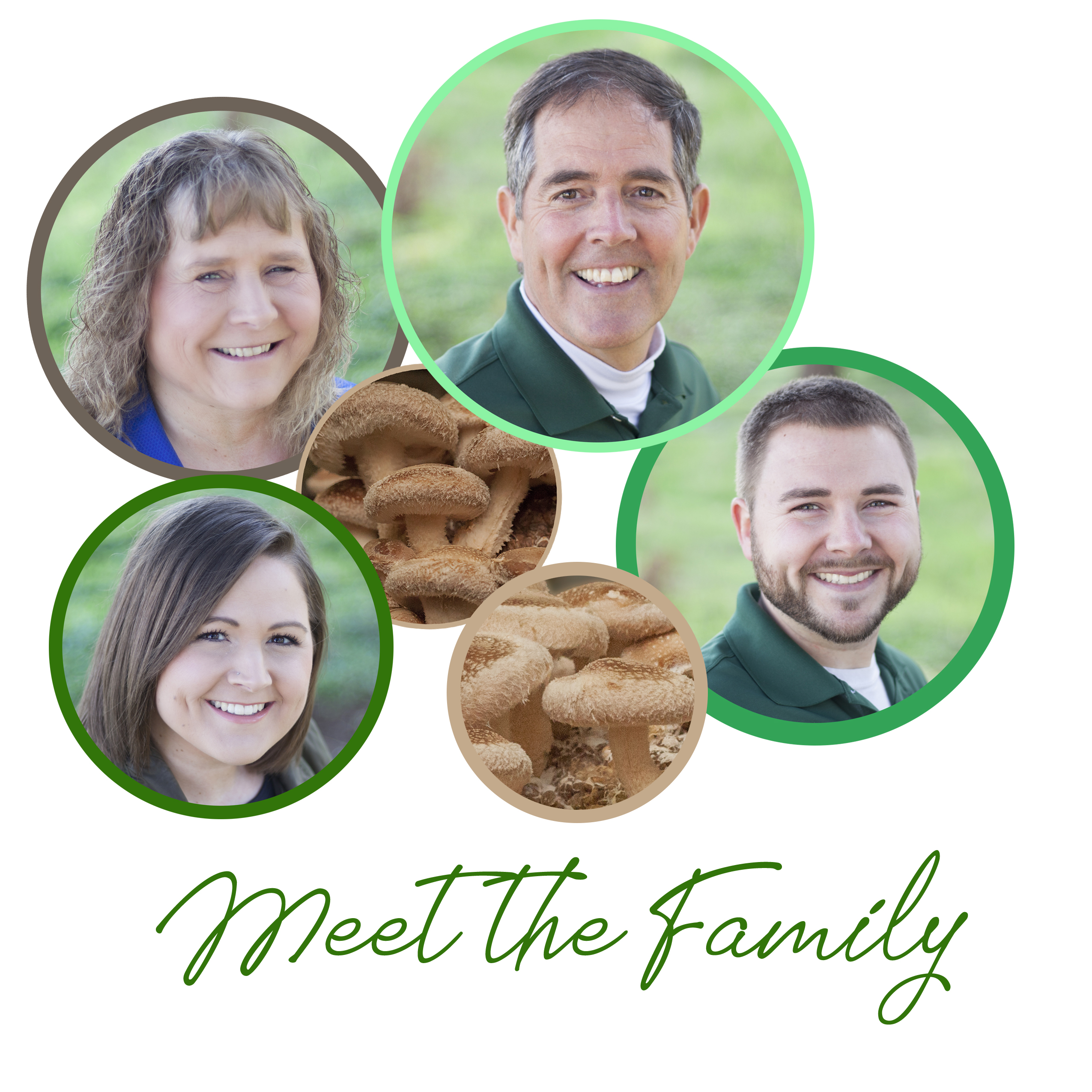meet the family shiitake mushrooms certified organic shiitake mushrooms oregon food safety vegan