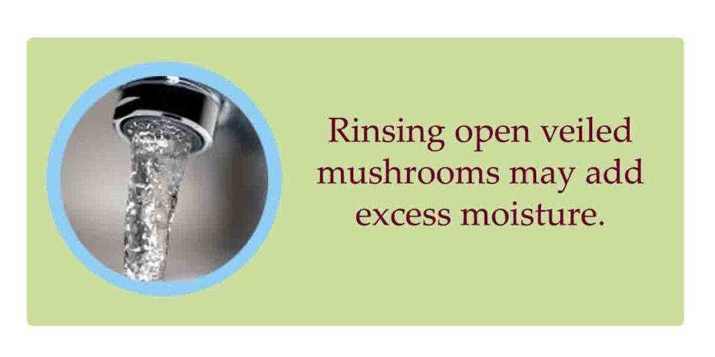 shiitake mushrooms preparation